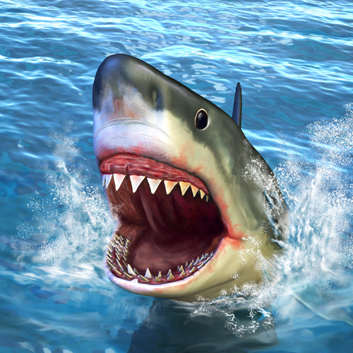 Shark Teeth Store  Great White Megalodon and More For Sale